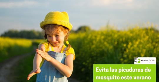 Evita las picaduras de mosquito este verano